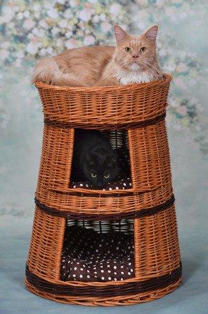 Legowisko wiklinowe dla zwierząt / domek dla kota